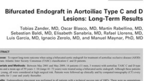 Bifurcated Endograft in Aortoiliac Type C and D Lesions: Long-term Results